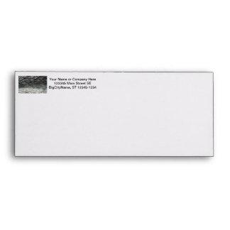 Grey tree bark close up fading envelopes