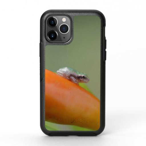 Grey Tree Frog, iPhone 11 Case.