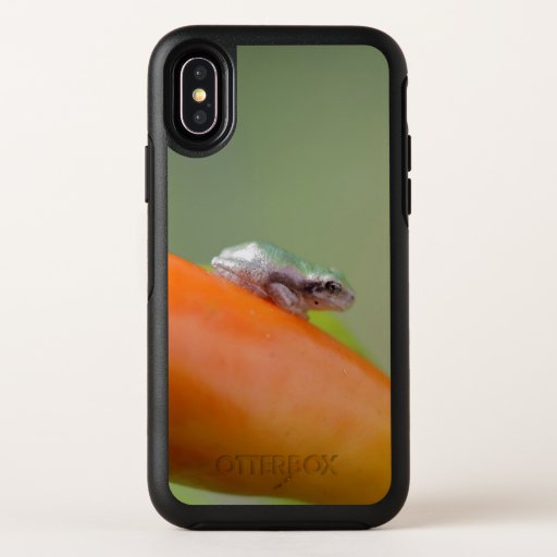 Grey Tree Frog, Otterbox iPhone X Case.