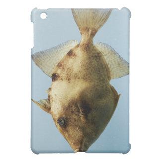 Grey Triggerfish iPad Mini Cover
