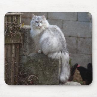 Grey-White Angora Cat Mouse Pad