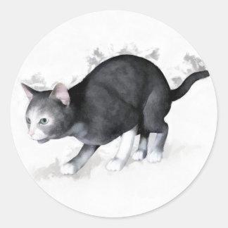 Grey White Cat Ready to Pounce Classic Round Sticker