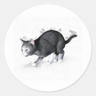 Grey White Cat Ready to Pounce Sticker