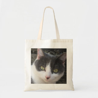 Grey & White Kitten Photo Image Budget Tote Bag