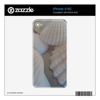 Grey White, Seashells, Sea Shell Summer Beach Love iPhone 4 Skins