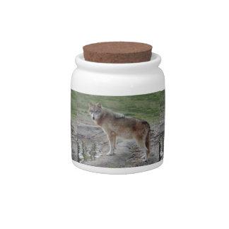 grey-wolf-11 plato para caramelo