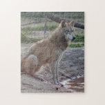 grey-wolf-15 rompecabezas con fotos