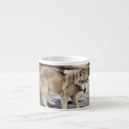 grey-wolf-18 tazitas espresso