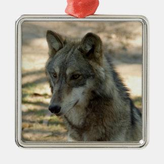 grey-wolf-21 ornamento para reyes magos