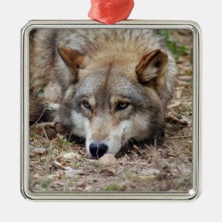 grey-wolf-4 adorno de reyes