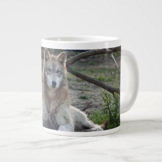 grey-wolf-5 jumbo mugs
