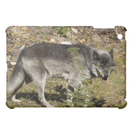 Grey Wolf  Animal Wildlife iPad Case