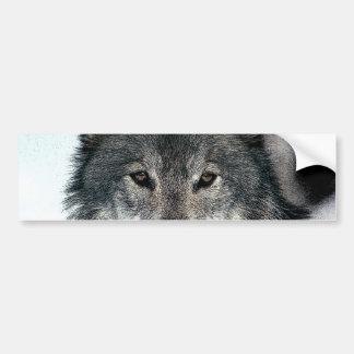 Grey Wolf Bumper Sticker