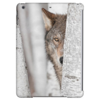 Grey Wolf (Canis lupus) Behind Tree iPad Air Cases