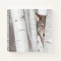 Grey Wolf (Canis lupus) Behind Tree Notebook