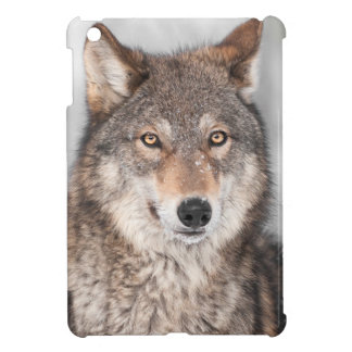 Grey Wolf (Canis lupus) With One Ear Back Cover For The iPad Mini