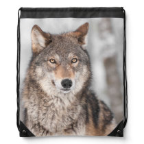 Grey Wolf (Canis lupus) With One Ear Back Drawstring Bag