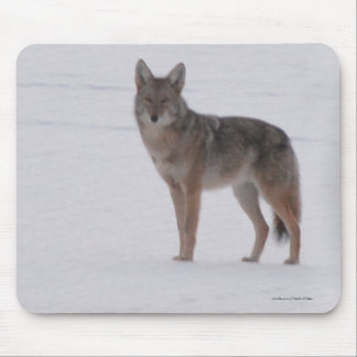 Grey Wolf Crossing Frozen Lake 2 #Gift Mousepad