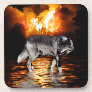 Grey Wolf Fire Flames Survivor Beverage Coasters