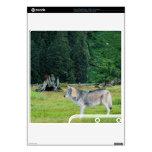 Grey Wolf & Forest Wildlife Playstation 3 Skin PS3 Slim Decals