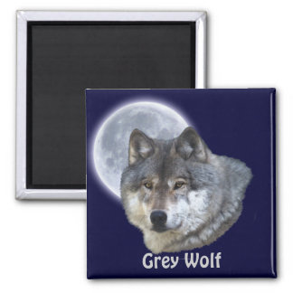 Grey Wolf & Full Moon Wildlife Collection 2 Inch Square Magnet