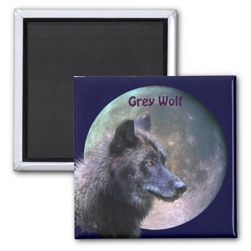 Grey Wolf & Full Moon Wildlife Collection Refrigerator Magnet