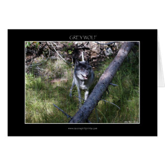 GREY WOLF Greeting or Note Cards