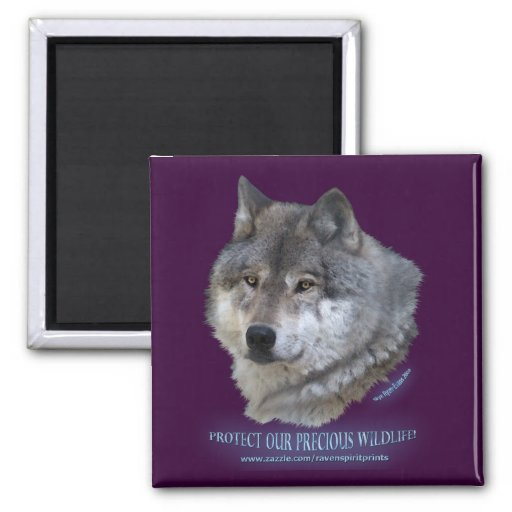 GREY WOLF HEAD Wildlife Supporter Magnet