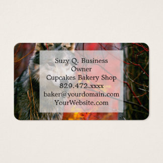 Grey Wolf in Beautiful Red and Yellow Foliage Business Card