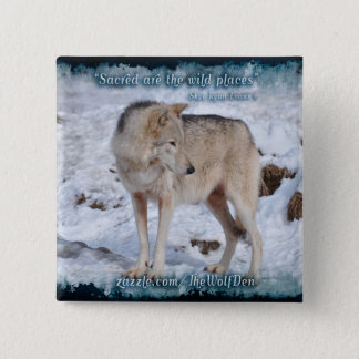 Grey Wolf in Winter Snow Wildlife Photo Pinback Button