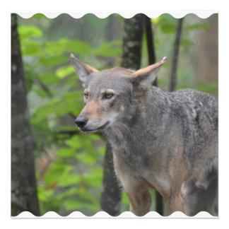 Grey Wolf Custom Invitation