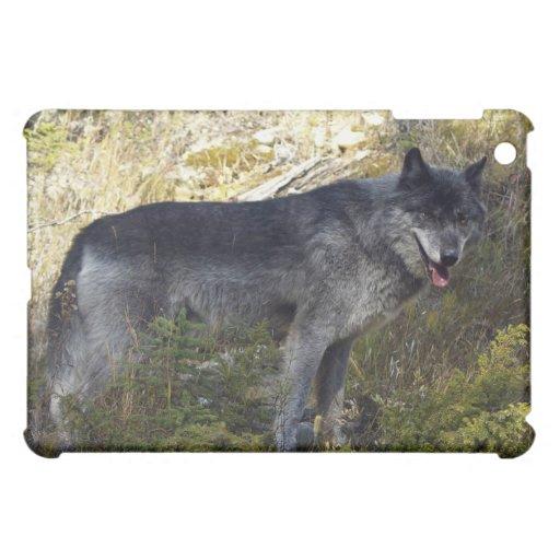 Grey Wolf iPad Case