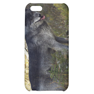 Grey Wolf iPhone Case iPhone 5C Cases