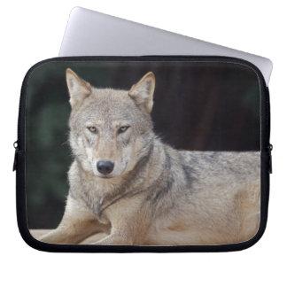 Grey Wolf Laptop Sleeve
