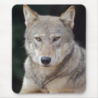 Grey Wolf Mousemat Mouse Pad