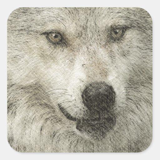 Grey Wolf Pencil Sketch Wildlife Art Gift Square Sticker