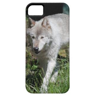 Grey Wolf phone case iPhone 5 Case