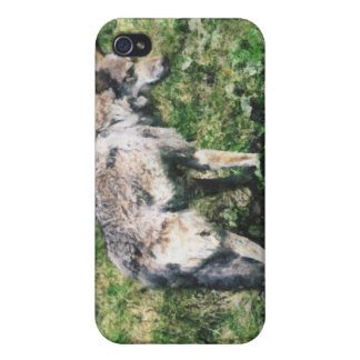 Grey Wolf Photo Art Collection iPhone 4 Cover