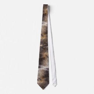 Grey Wolf  Photo Realistic Fur Wildlife Tie