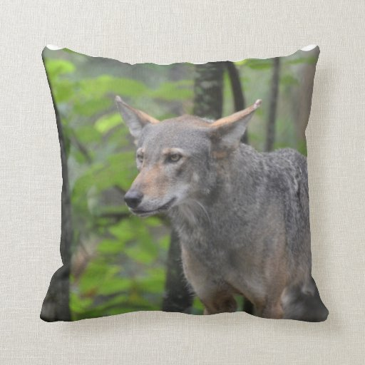 Grey Wolf Pillow