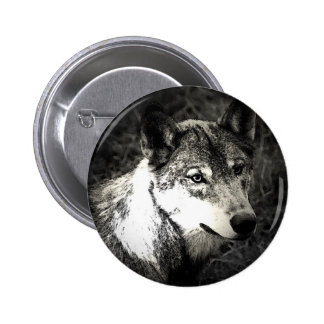 Grey Wolf Pinback Button