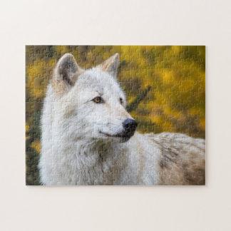 Grey Wolf Portrait on Gold Jigsaw Puzzles