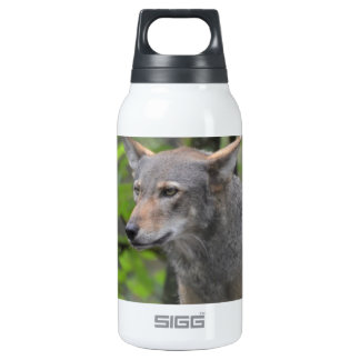 Grey Wolf SIGG Thermo 0.3L Insulated Bottle