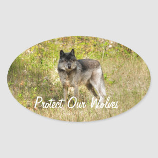 Grey Wolf & Wilderness Photo Gift Oval Sticker