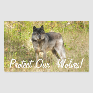 Grey Wolf & Wilderness Photo Gift Rectangular Sticker