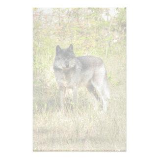 Grey Wolf & Wilderness Photo Gift Stationery
