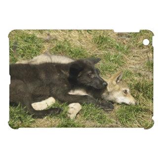 Grey Wolf Wildlife and Nature Design iPad Mini Cases