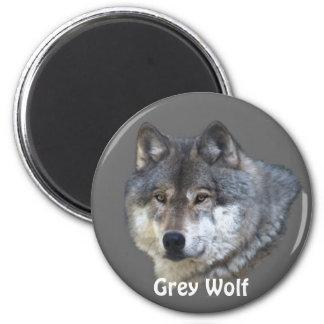 Grey Wolf Wildlife Collection 2 Inch Round Magnet