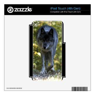 Grey Wolf Wildlife-lover Electronics Device Skin Decal For iPod Touch 4G