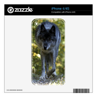 Grey Wolf Wildlife-lover Electronics Device Skin Skins For The iPhone 4S